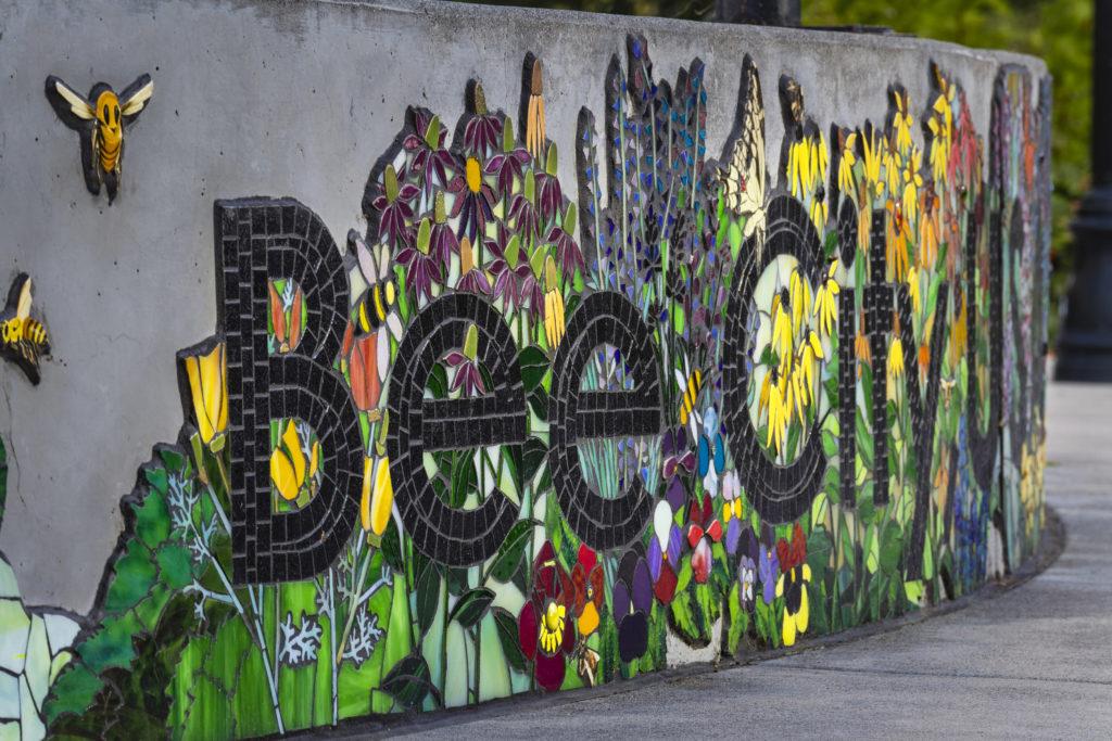 Karen Rycheck, Bee City USA: Talent Community Created Mural, 2019